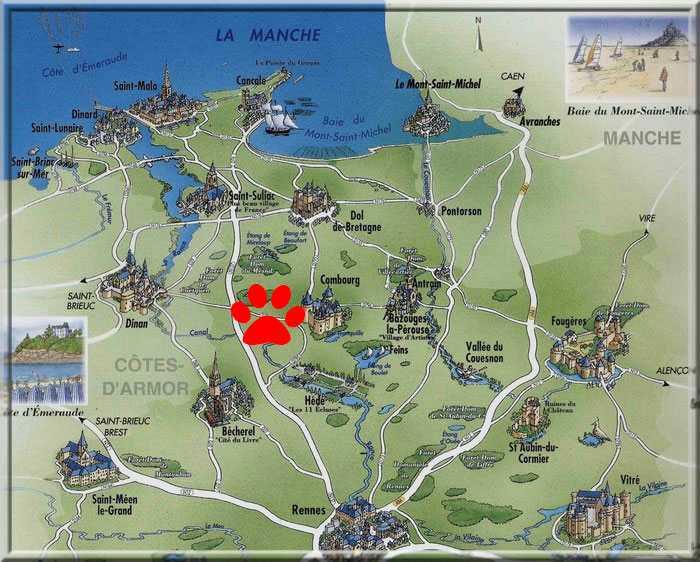Chiot beauceron lof elevage de beaucerons lof familial bretagne normandie contact ou - Office de tourisme ille et vilaine ...